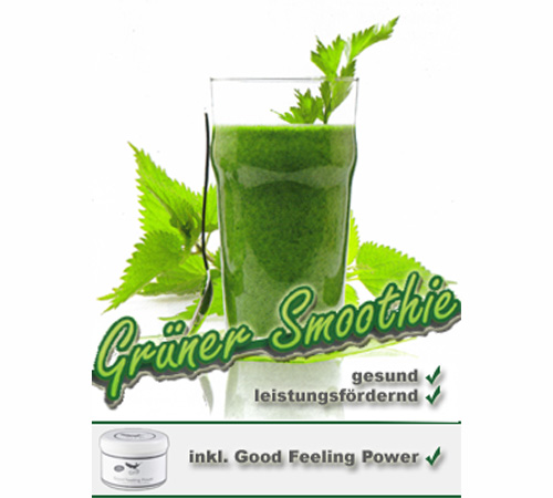 Grüner-Smoothie :: Vitalworkshop
